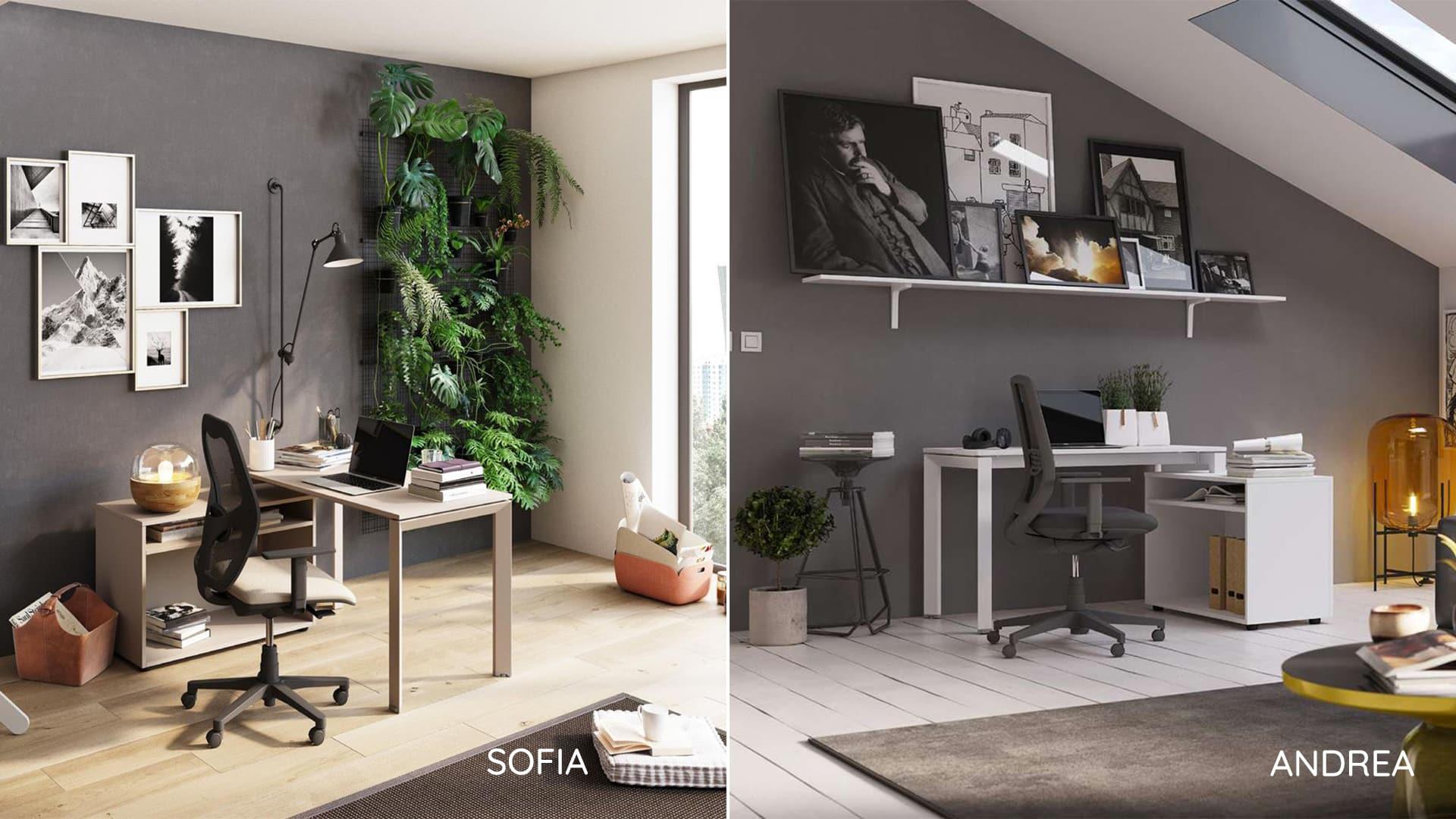 sofia_andrea